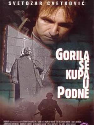 Gorila se kupa u podne
